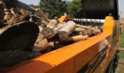 Переработать отходы в биотопливо