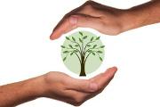ecology-econimis