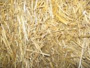 straw
