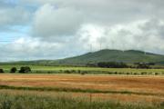 wind_australia